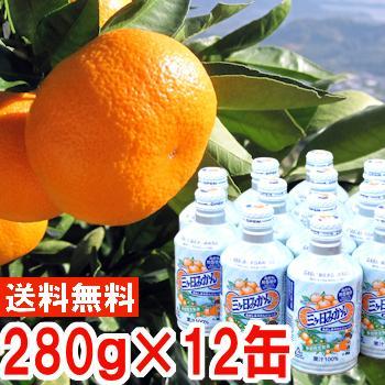 ジュース ギフト 三ケ日青島みかんジュース12缶入り1箱 muskmelon