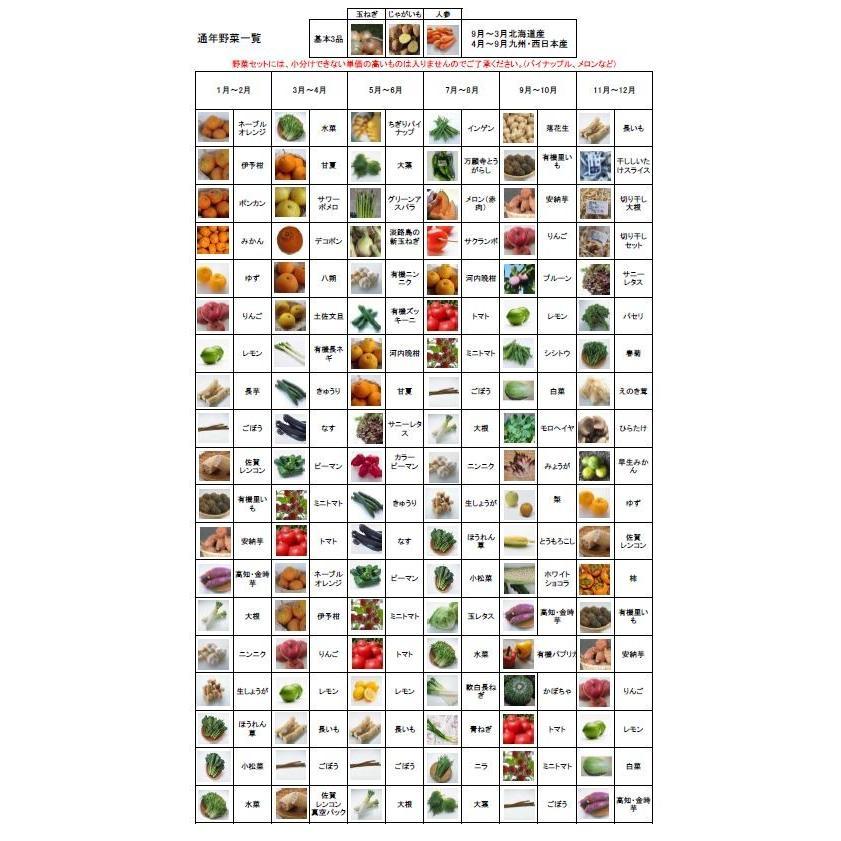 むつみ屋 旬の有機野菜セット10〜12品|mutumiya-web|02