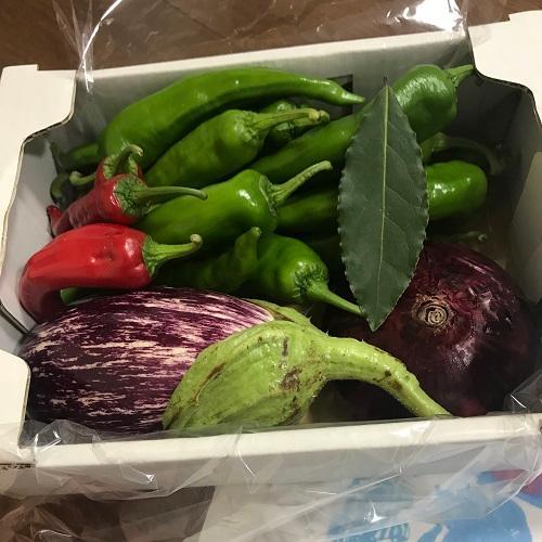 夏野菜カレーセット|my-cs-kyoyasai-pj