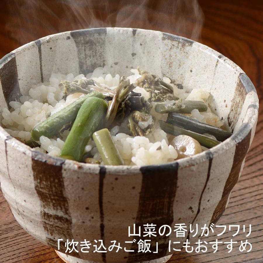 国産山菜醤油漬け ZO-231 味付け山菜|nagaoka-kojimaya|05