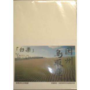 因州機械漉半紙 「白楽」 100枚 nagomi2006
