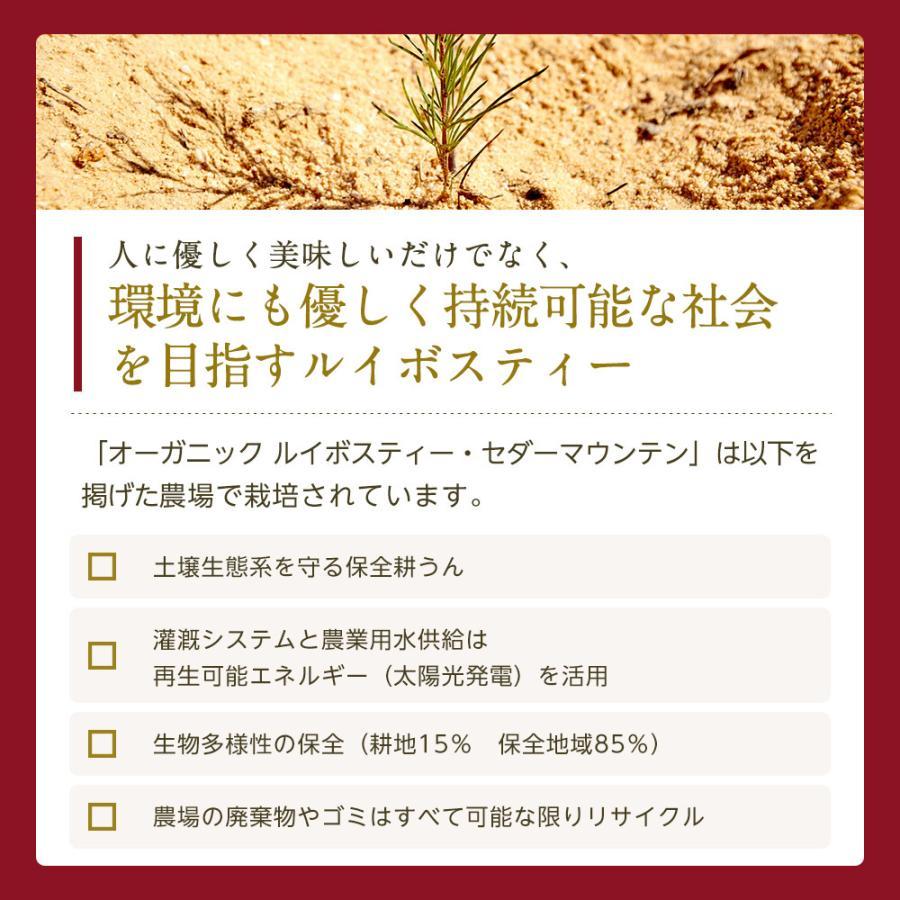オーガニック ルイボスティー セダーマウンテン ティーバッグ 100包 【送料無料】|nagomisabo|12
