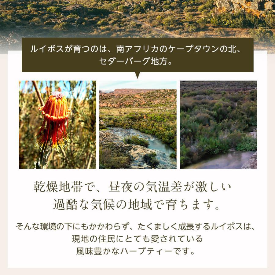 オーガニック ルイボスティー セダーマウンテン ティーバッグ 100包 【送料無料】|nagomisabo|04