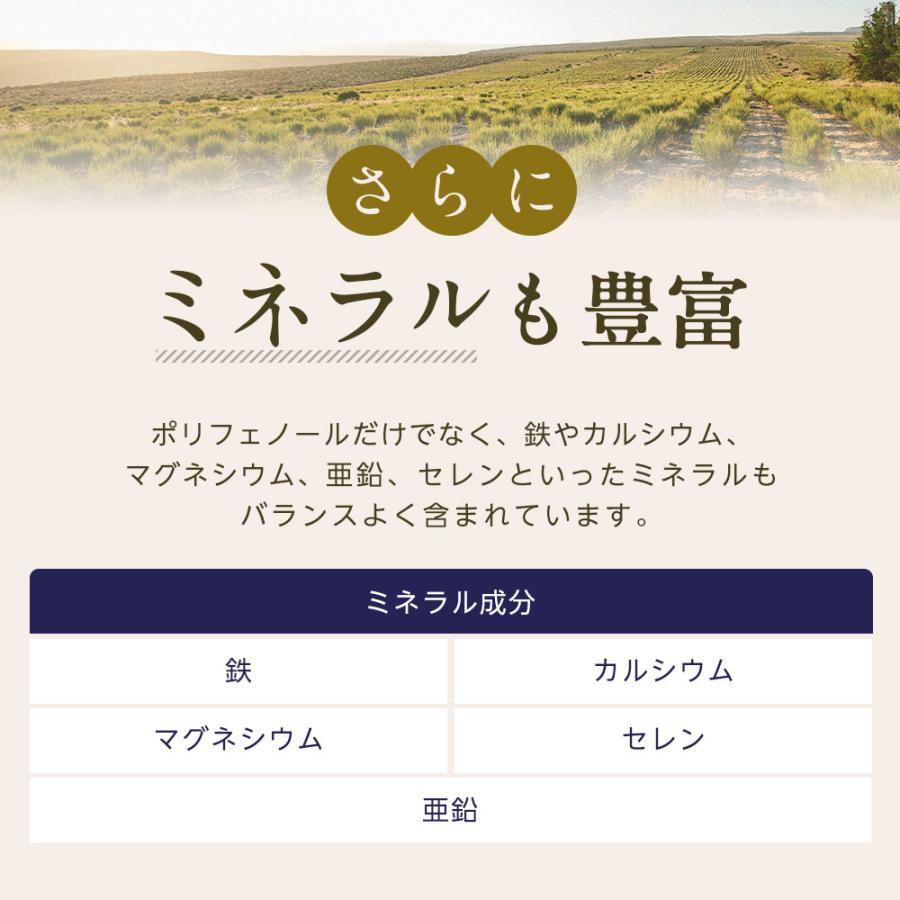 オーガニック ルイボスティー セダーマウンテン ティーバッグ 100包 【送料無料】|nagomisabo|06