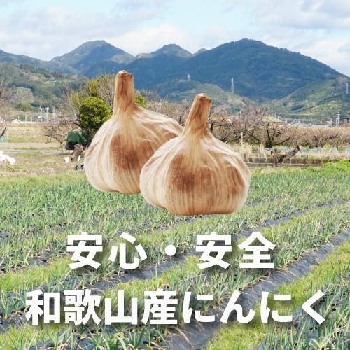 黒にんにく(中野農園)生活をサポートする健康食品 - 農産物加工品研究所 中野農園|nakanonouen88|03