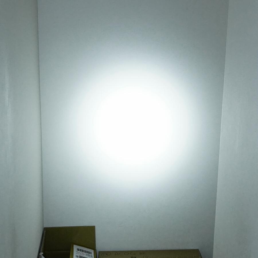 SUREFIRE タイプ M600C スカウトライト デュアルスイッチ 付き WD04007-BK-LOGO WADSN 製 naniwabase 11
