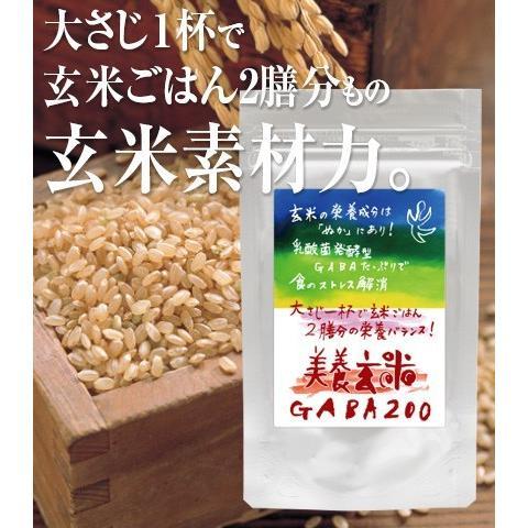 美養玄米GABA200(150g)|nanpoo|04