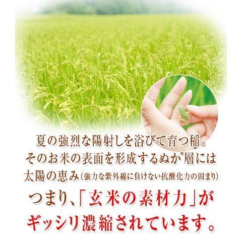 美養玄米GABA200(150g)|nanpoo|05