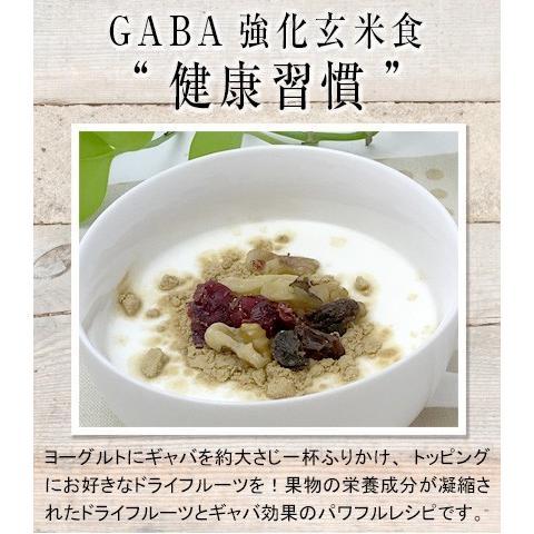 美養玄米GABA200(150g)|nanpoo|08