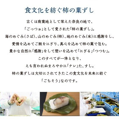 柿の葉寿司 柿の葉ずし 平宗 さば 鯖 さけ 鮭 金目鯛 あなご 海老 贈答用木箱入り 30個入り 30-5 ギフト  敬老の日 送料無料|naranokoto|06