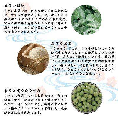 わさび葉寿し てまり寿司 寿司 冷凍 うるわし手鞠 一口サイズ 15個 お盆 御中元 ギフト 土産 梅守 naranokoto 04