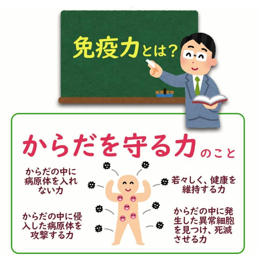 ヒメマツタケ アガリクス 多糖体 顆粒 万寿姫 3g×30包 サプリメント 健康元気|narugen|10