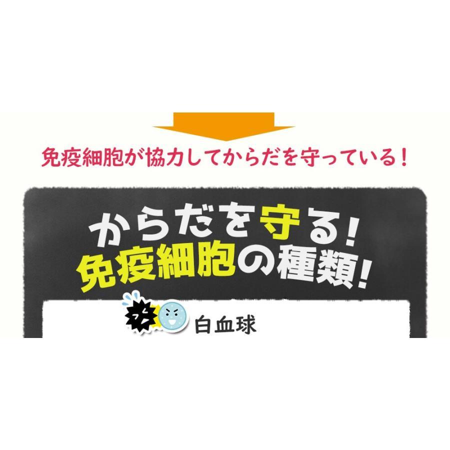 ヒメマツタケ アガリクス 多糖体 顆粒 万寿姫 3g×30包 サプリメント 健康元気|narugen|11