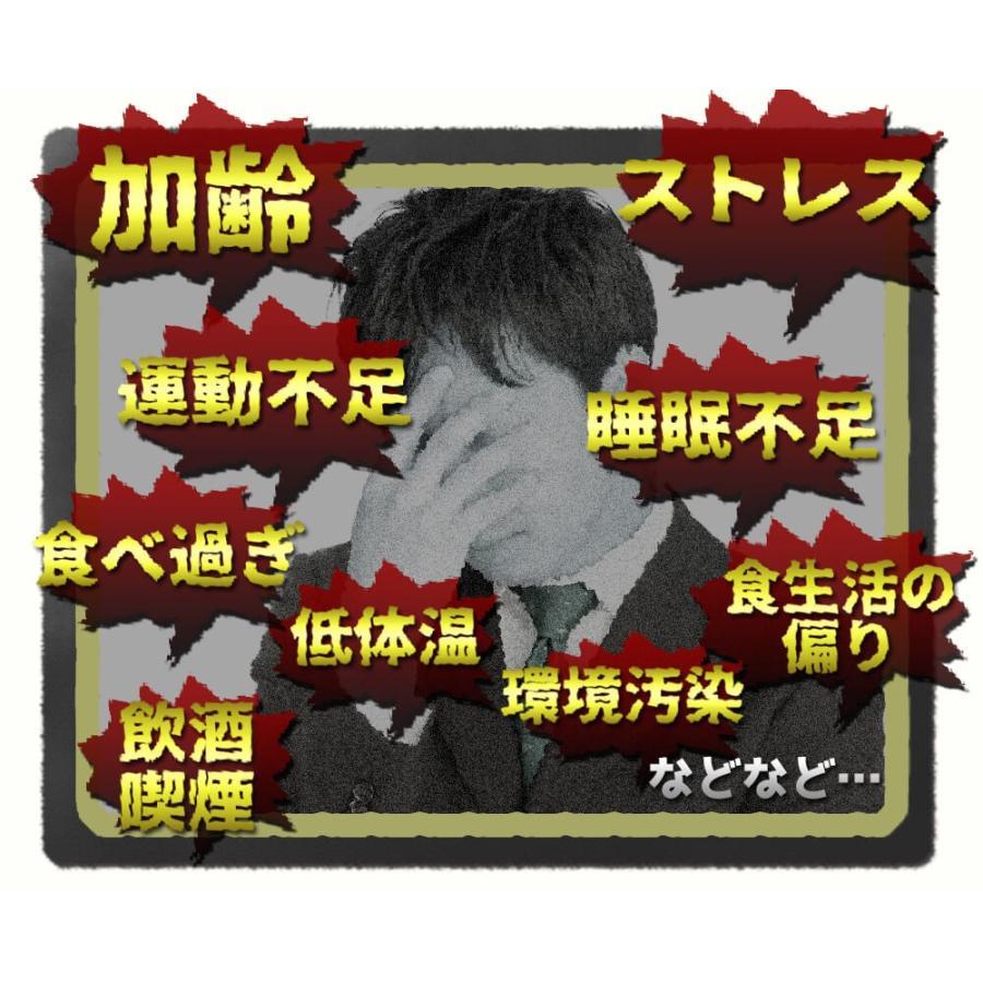 ヒメマツタケ アガリクス 多糖体 顆粒 万寿姫 3g×30包 サプリメント 健康元気|narugen|17
