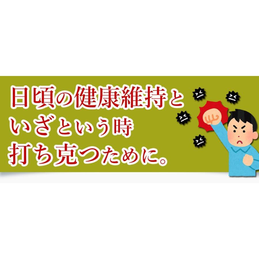 ヒメマツタケ アガリクス 多糖体 顆粒 万寿姫 3g×30包 サプリメント 健康元気|narugen|19
