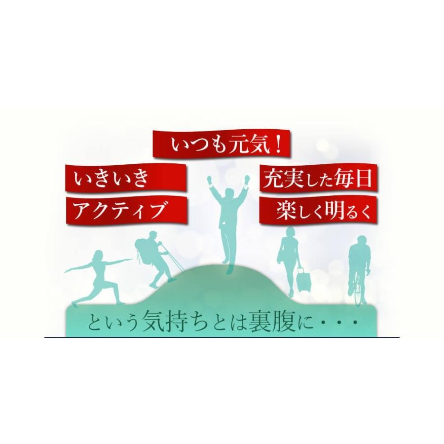 ヒメマツタケ アガリクス 多糖体 顆粒 万寿姫 3g×30包 サプリメント 健康元気|narugen|06