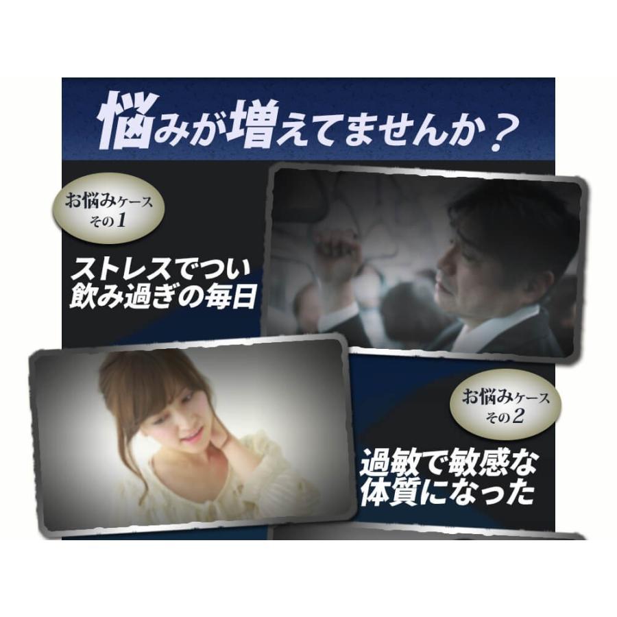 ヒメマツタケ アガリクス 多糖体 顆粒 万寿姫 3g×30包 サプリメント 健康元気|narugen|07