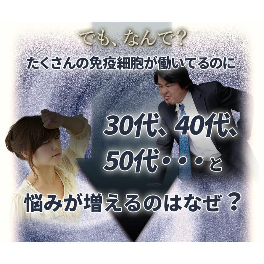 ヒメマツタケ アガリクス エキス 顆粒 千寿姫 2g×30包  サプリメント 健康元気 narugen 13