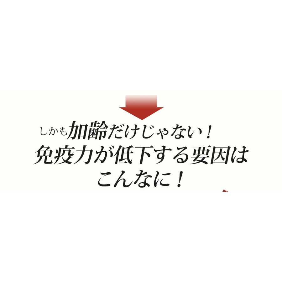 ヒメマツタケ アガリクス エキス 顆粒 千寿姫 2g×30包  サプリメント 健康元気 narugen 16