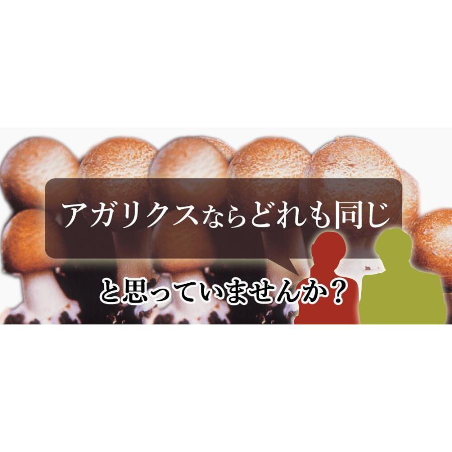 ヒメマツタケ アガリクス エキス 顆粒 千寿姫 2g×30包  サプリメント 健康元気 narugen 04