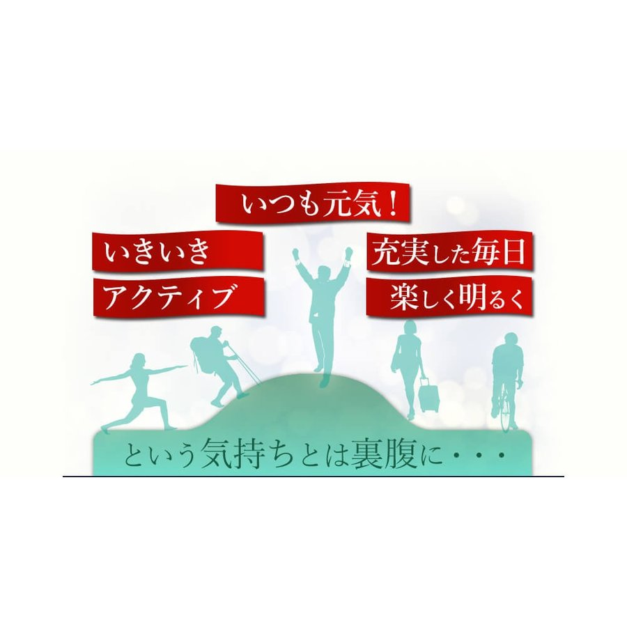 ヒメマツタケ アガリクス エキス 顆粒 千寿姫 2g×30包  サプリメント 健康元気 narugen 06