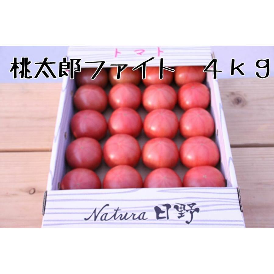 トマト 新色追加して再販 桃太郎ファイト ナチュラ日野 正規逆輸入品 4kg