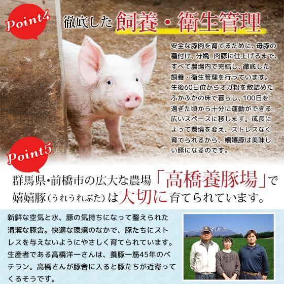 豚肉 ロース肉 薄切りスライス 嬉嬉豚 (100g)(しゃぶしゃぶ すき焼き 鍋 選べるスライス)|naturalporklink|04