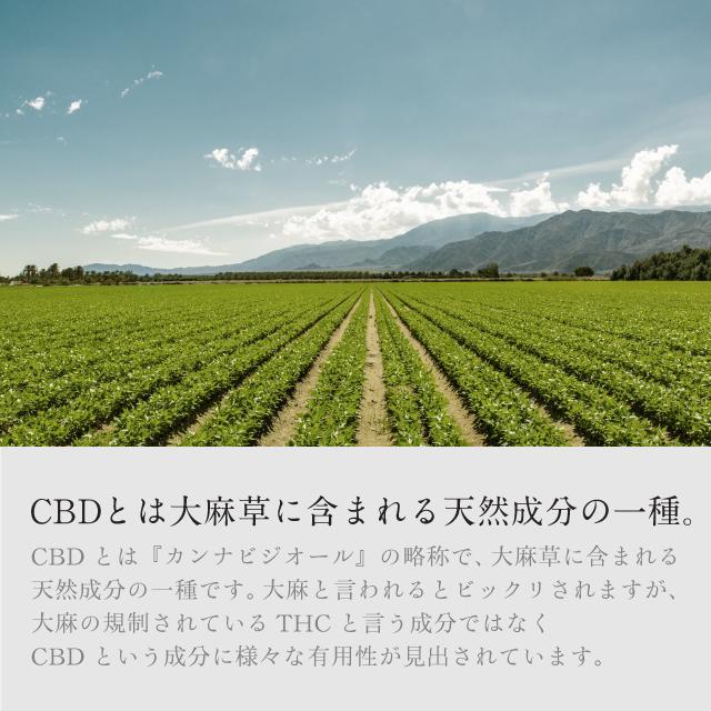 【国産CBD】『口で溶ける CBD 40粒』1000mg(1箱中) 錠剤タイプ 検査済 naturalrainbow 03