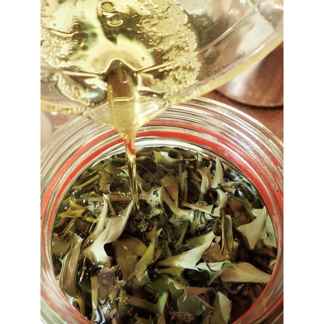 nauhiaherb 石垣島月桃タマヌオイル 30ml(トリートメントオイル)|nauhia-herb|03