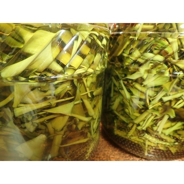 nauhiaherb 石垣島月桃タマヌオイル 30ml(トリートメントオイル)|nauhia-herb|04
