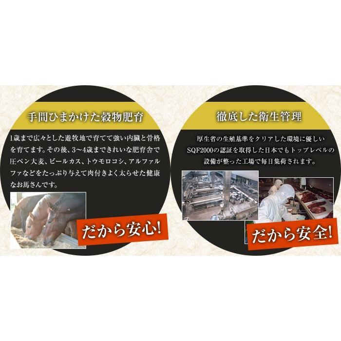 馬刺し 専門店 の 美味しさ を ご家庭に!【馬 たたき】 一つ一つ職人が焼き上げた 贅沢 馬肉 熊本育ち ユッケにも! naya-d 04