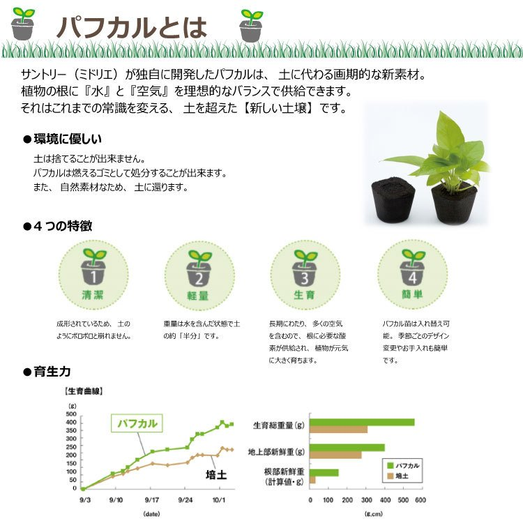 すみっコぐらし ミドリエデザイン 観葉植物 植物 壁掛け植物 本物 土を使わない パフカル苗 交換苗 かわいい 癒やし セットモデル3苗 ミドリエ給水ボトル|ndc1shop|10