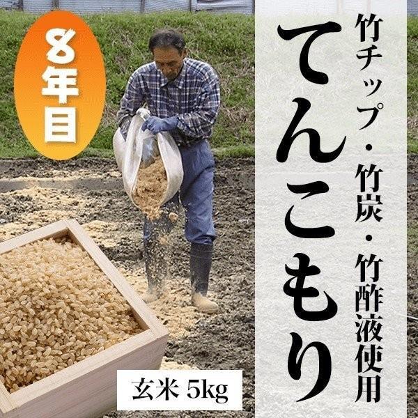 新米 孟宗竹チップ&製法特許竹酢液使用 てんこもり 新米 玄米 5kg(精米できます) 8年目 乳酸発酵|nemuriestore
