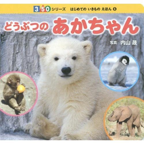 本 雑誌 どうぶつのあかちゃん 350シリーズ はじめてのいきものえほん 初売り 写真 絶品 6 内山晟