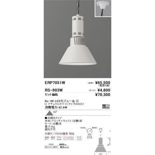 遠藤照明 ERP7051W テクニカルペンダント テクニカルペンダント Rs-48 LEDモジュール付 ナチュラルホワイト 角度60度 非調光 [代引き不可]