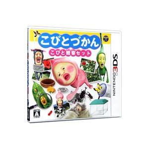 販売実績No.1 3DS こびとづかん 初回限定 こびと観察セット