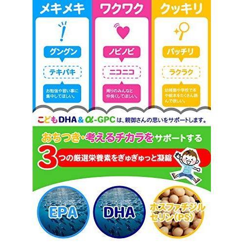 こども DHA&α-GPC DHA EPA α-GPC ホスファチジルセリン 配合 【集中・学習特化型サプリメント】 60粒約30日分|netshop-kadoyoriya|04