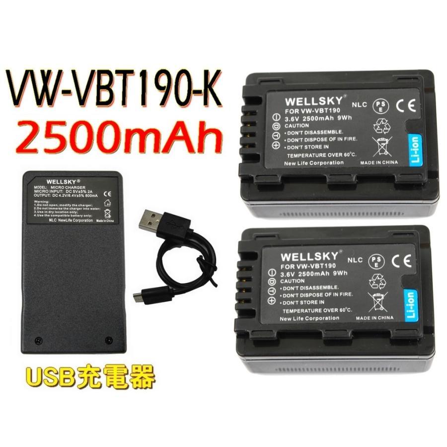 Panasonic パナソニック 互換バッテリー VW-VBT190-K 捧呈 代引き不可 VW-VBT190 2個 超軽量 3点セット VW-BC10-K 1個 Type-C USB 急速 互換充電器