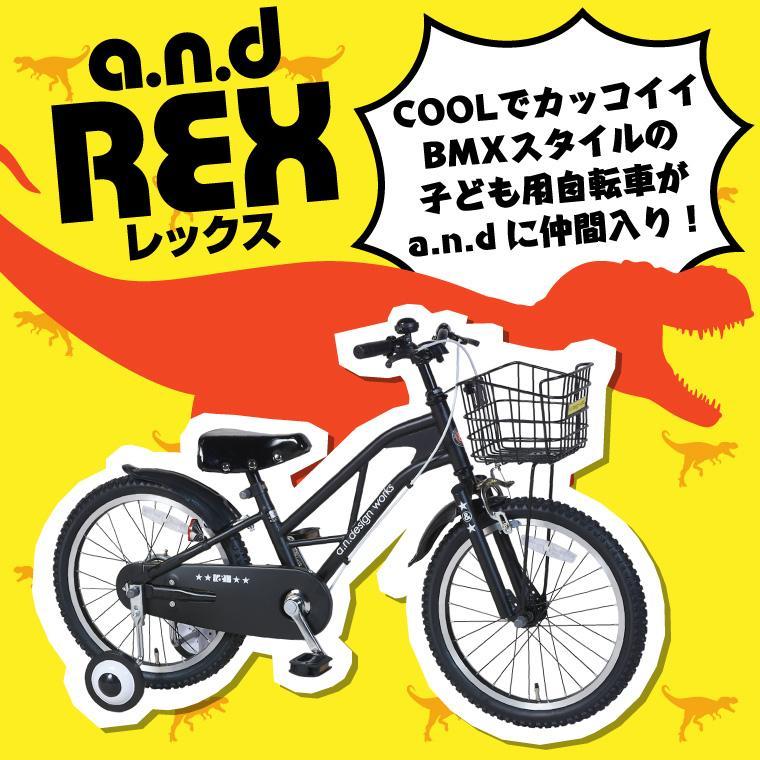 子供用 自転車 16インチ 本体 男 女 おしゃれ キッズ 100~120cm 3歳 4歳 5歳 6歳 お客様組立 アウトレット a.n.design works REX16 レックス nextbike 04