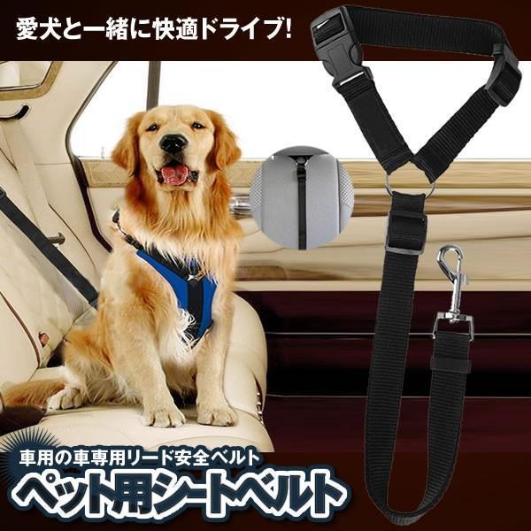 時間指定不可 ペット ※アウトレット品 犬用 猫 シートベルト ドライブ 飛びつく防止 安全ベルト 簡単装着 PESIBE 車専用リード