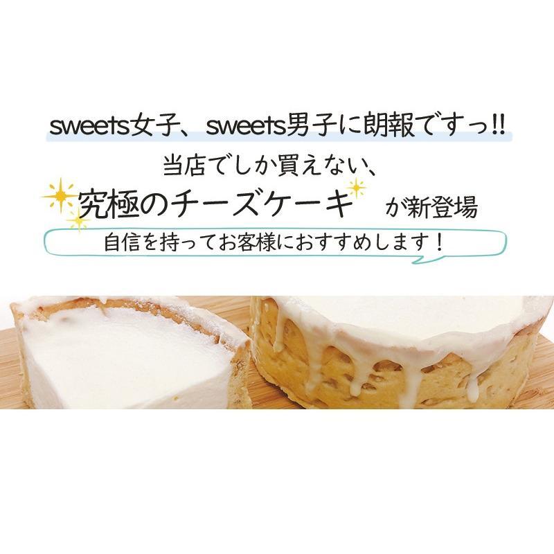 敬老の日 ミルクチーズタルト 【 4号 3〜4人用 】 チーズケーキ スイーツ ギフト nfcs 03