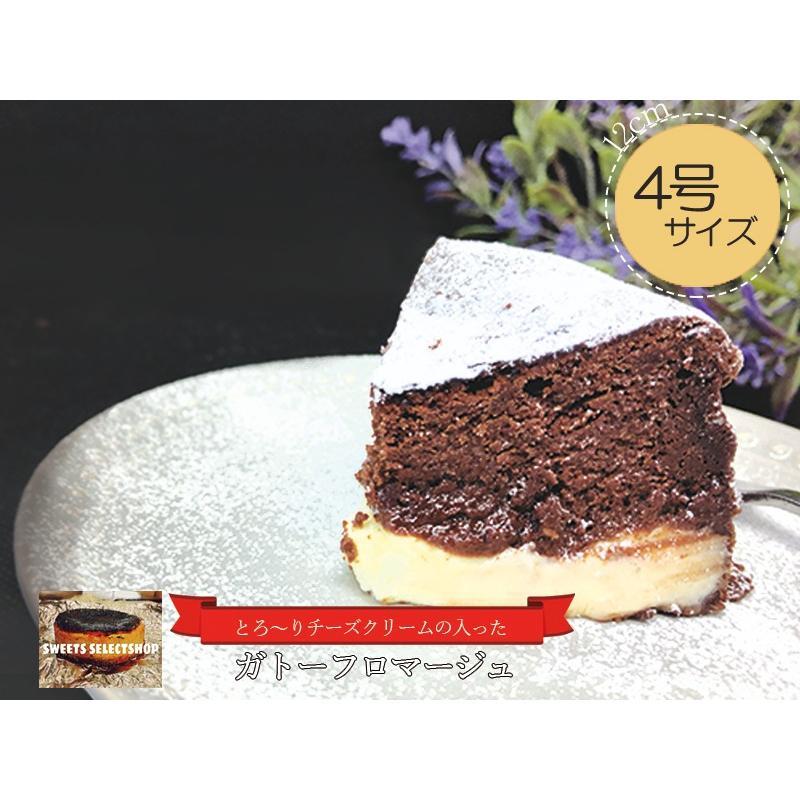 敬老の日 ガトーショコラ ガトーフロマージュ 4号ケーキ(3〜4人用) お取り寄せ プレゼント 手土産 nfcs 02