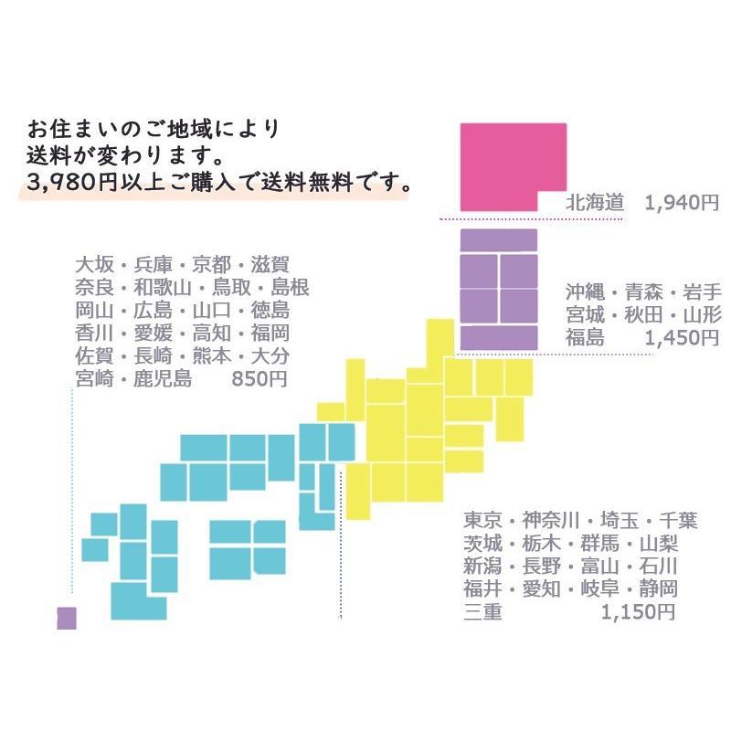 敬老の日 ガトーショコラ ガトーフロマージュ 4号ケーキ(3〜4人用) お取り寄せ プレゼント 手土産 nfcs 07