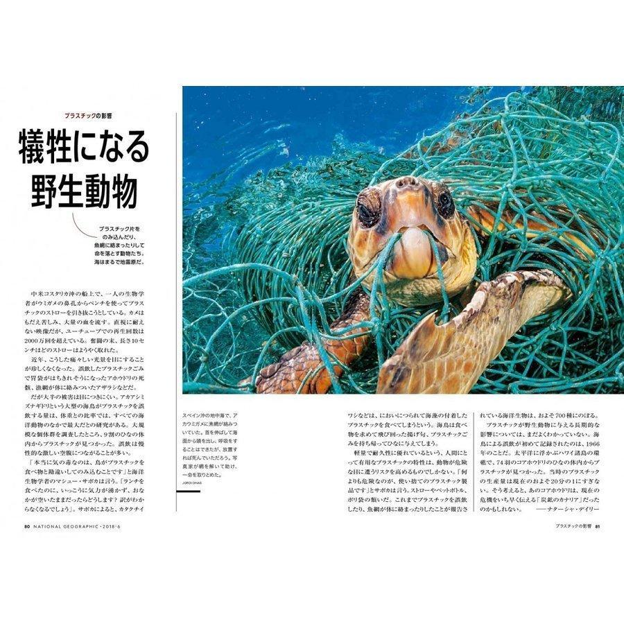 ナショナル ジオグラフィック日本版 定期購読(3年36冊) ngshop 04