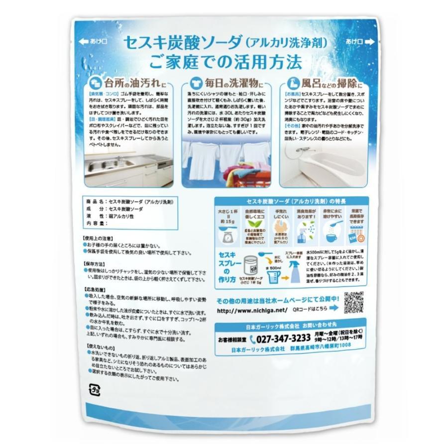 セスキ炭酸ソーダ 950g メール便専用品 送料無料 アルカリ洗浄