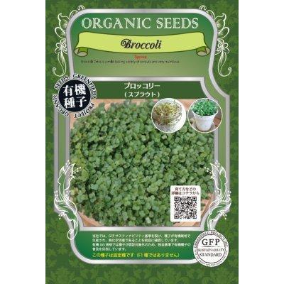 スプラウト 種 ブロッコリー 有機種子 固定種 小袋|nicoco