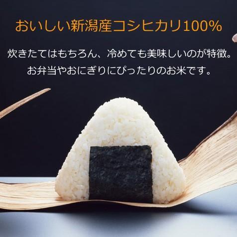 コシヒカリ 1キロ 新潟米 1kg  令和3年産 お米 新潟産 産地直送 米 コメ niigata-gourmet 02