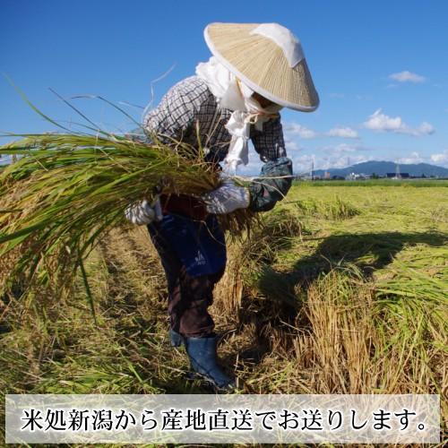 コシヒカリ 1キロ 新潟米 1kg  令和3年産 お米 新潟産 産地直送 米 コメ niigata-gourmet 03