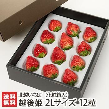 越後姫 2Lサイズ 12粒(化粧箱入り) 北越いちば/新潟産ブランド苺/のし(熨斗)無料/送料無料 niigata-shop