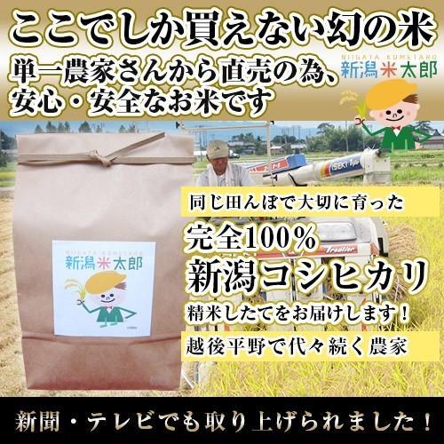 「SALE」激安価格5kg【新潟米太郎 2018年度米】 niigatanokome